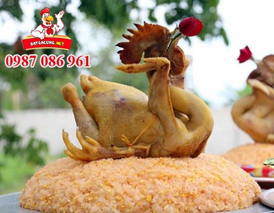 Cung cấp và nhận đặt gà cúng đẹp tại các quận 1 2 3 4 5 6 7 8 9 10 11 12 tphcm
