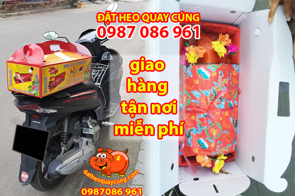 Đặt heo sữa quay ngon tại quận 1 2 3 4 5 Phú Nhuận
